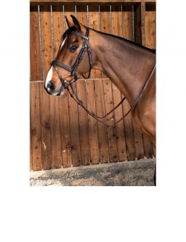Dyon Working Collection flash noseband bridle - 2