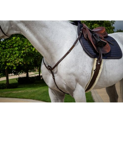 Dyon Hunter Collection breastplate - 1