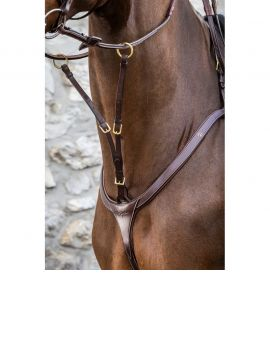 Dyon D Collection running martingale attachment - 2