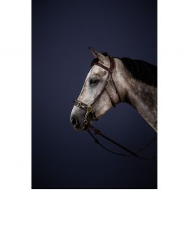 Dyon New English Collection hackamore bridle - 2