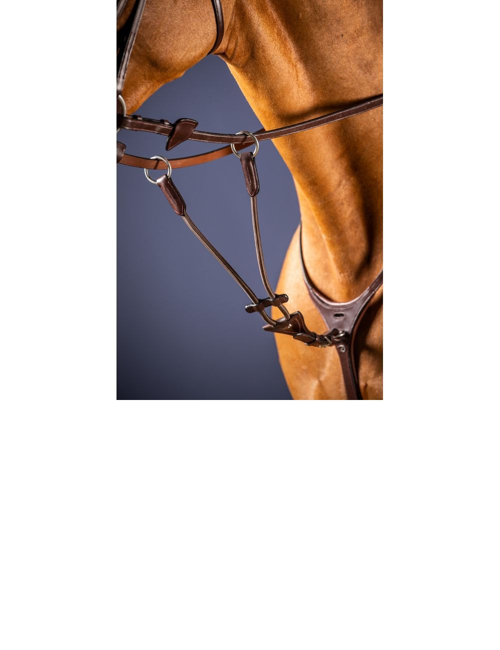 Dyon New English Collection elastic martingale attachment - 2