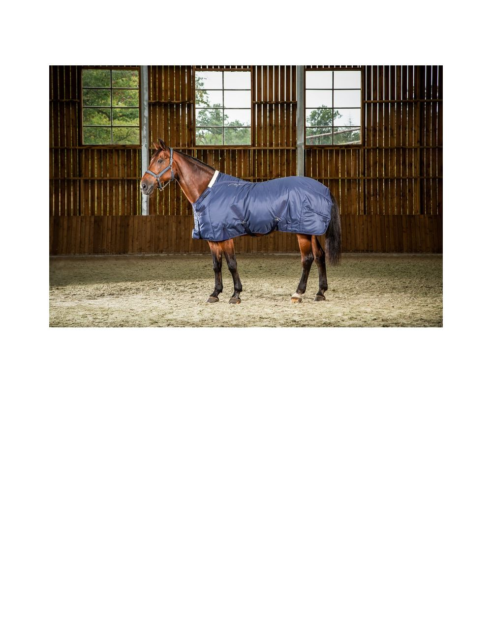 Dyon winter stable rug - 1