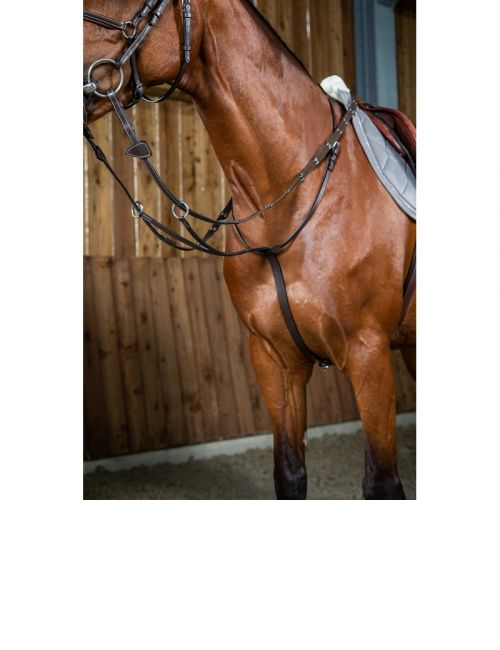 Dyon Working Collection Martingale - 1