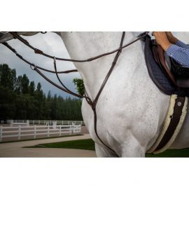 Dyon Hunter Collection running martingale - 1