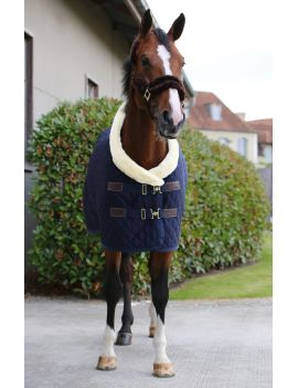 Kentucky horsewear show rug 160g navy blue - 5