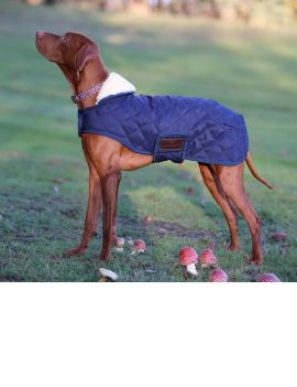 Kentucky Dogwear dog coat - 4