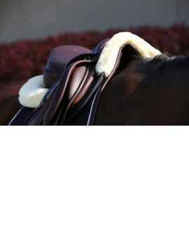 Kentucky horsewear absorb anatomic half pad - 8