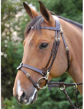 Dyon Working Collection bridle Pro - 1