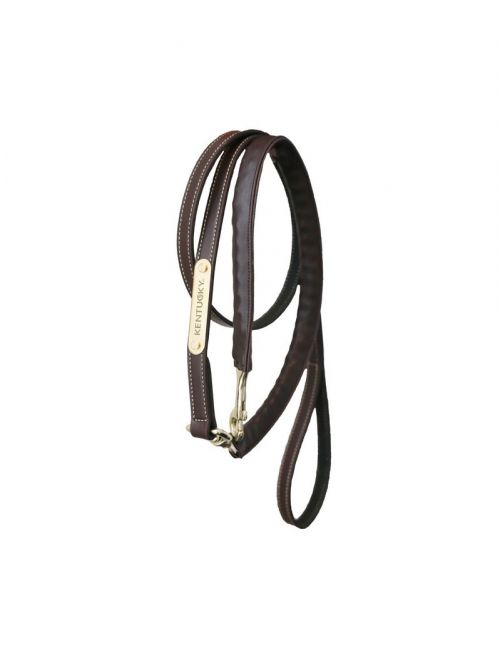 Kentucky Horsewear leather covered chain lead 270cm - 1