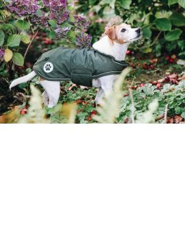 Kentucky Horsewear Dog Coat Waterproof - 2
