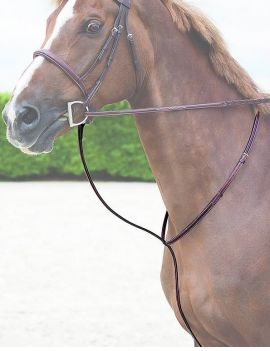Dy'on Hunter Collection fixed martingale