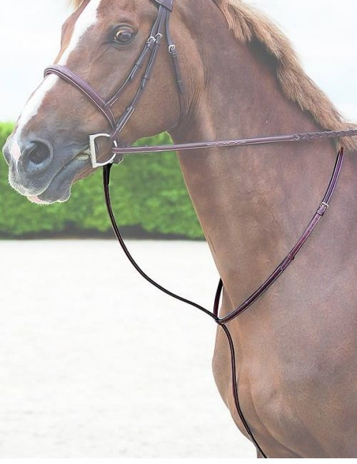 Dy'on Hunter Collection fixed martingale - 1