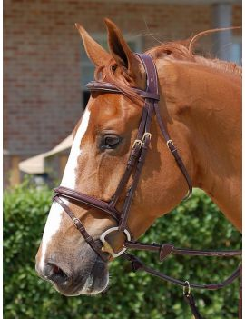 Dyon Collection Flash Noseband Bridle - 1
