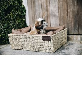 Kentucky Dogwear Dogbed Basket - 1