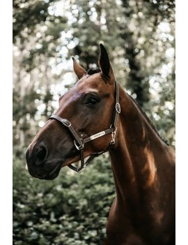 Kentucky Horsewear Leather Halter Flexible - 2