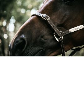 Kentucky Horsewear Leather Halter Flexible - 3