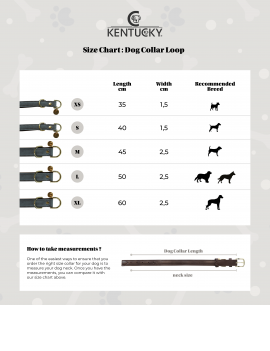 Kentucky Dog Collar 'Loop' - 4