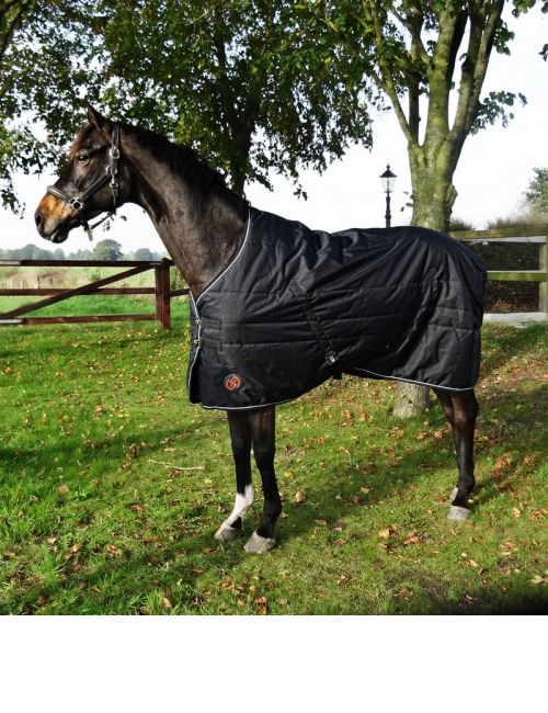 ONE Equestrian stable rug 200 grams - 1