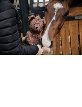 Kentucky Horsewear Relax Horse Toy Bear - 1