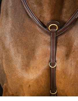 Dyon Collection Breastplate with bridge - 1