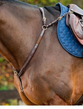 Dyon Collection Breastplate with bridge