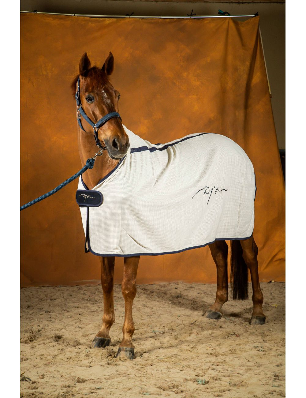 Dyon honey cooler rug - 1