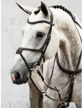 PS of Sweden Pro Jump Bridle mexican noseband Athens - 1