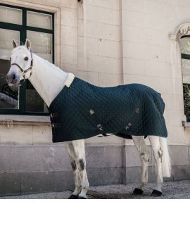 Kentucky horsewear stable rug winter green - 1