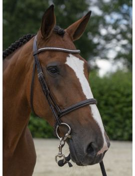 Stallmeister clincher browband - 1