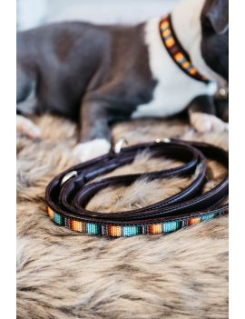 Kentucky Dogwear dog lead pearls orange - 1