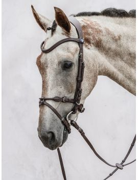 PS of Sweden Bridle HvE - 1