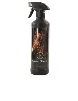 BR Coat Shine 500 ml - 1