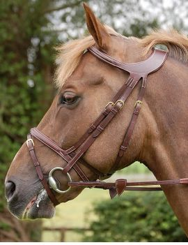 Dyon Difference flash noseband bridle - 1